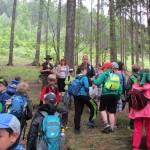 Gemeinsames Waldprojekt in Chyse, Tschechien